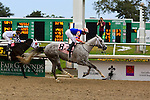 January 16, 2016: Stageplay with Florent Geroux up wins the Silverbulletday Stakes race in New Orleans Louisiana. Steve Dalmado/ESW/CSM