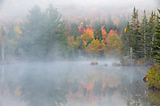 Wildlife Pond in Bethlehem, New Hampshire USA on a foggy autumn day.