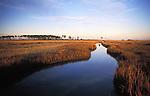 A meandering marsh gut, or creek near Bishops Head in Chesapeake Bay.