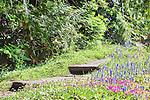 Stone path through wildflowers in alpine botanical garden.  Ohme Gardens, Wenatchee, Chelan County, Washington, USA.