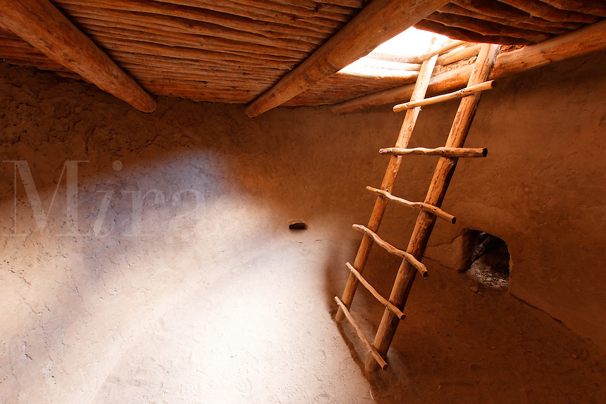 Wooden ladder and interior of Alcove House, Bandelier National Monument, New Mexico, USA