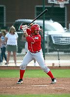 Dylan Harris - Cincinnati Reds 2019 spring training (Bill Mitchell)