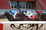 March 14, 2020: The start of the rebel stakes day at Oaklawn Racing Casino Resort in Hot Springs, Arkansas. ©Justin Manning/Eclipse Sportswire/CSM