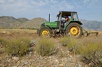 ALBANIA, Shkodra, farming of herbal and medical plants, plowing of old Lavender field with John Deere Tractor / ALBANIEN, Shkoder, Anbau von Heil- und Gewuerzpflanzen, Farm von Agro-Map, Pfluegen eines alten Lavendel Feldes mit John Deere Traktor
