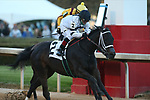March 6, 2021: Will's Secret (2) with jockey Jon Court aboard winning the Honeybee Stakes (G3) at Oaklawn Racing Casino Resort in Hot Springs, Arkansas on March 6, 2021. Justin Manning/Eclipse Sportswire/CSM