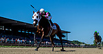 July 13, 2019 : Altissimo #2, ridden by Christian Pilares, wins the Hockessin Stakes on Delaware Handicap Day at Delaware Park in Stanton, Delaware. Scott Serio/Eclipse Sportswire/CSM