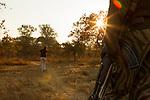 Cheetah (Acinonyx jubatus) biologist, Xia Stevens, looking at tracks with park scout keeping watch, Kafue National Park, Zambia