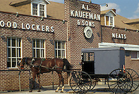 AJ3011, horse and buggy, amish, store, Amish country, Lancaster County, Pennsylvania, Pennsylvania Dutch Country, An Amish horse and buggy wait outside Kauffman's Frozen Food Lockers grocery store in Intercourse in the state of Pennsylvania.