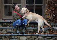 FAO JANET TOMLINSON, DAILY MAIL PICTURE DESK<br /> Pictured: A farm employee with one of the dogs Wednesday 23 November 2016<br /> Re: The Dog House in the village of Talog, Carmarthenshire, Wales, UK