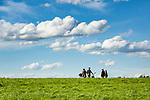 Deutschland, Bayern, Oberbayern, Chiemgau: Begegnung zwischen Radfahrer und Wandererl | Germany, Upper Bavaria, Chiemgau, cyclists and hiker in meadow