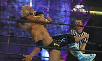 Hulk Hogan  The Rock at Wrestlemania 2002                                                                         By John Barrett/PHOTOlink