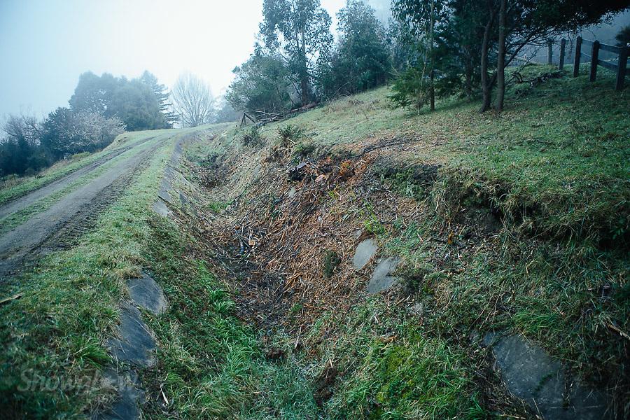 Image Ref: YV283<br /> Location: O'Shannassy Aqueduct Trail<br /> Date: 26.08.18