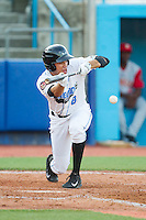 Elias Torres (8) of the Hudson Valley Renegades lays down a bunt against the Brooklyn Cyclones at Dutchess Stadium on June 18, 2014 in Wappingers Falls, New York.  The Cyclones defeated the Renegades 4-3 in 10 innings.  (Brian Westerholt/Four Seam Images)