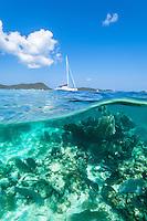 Split level view of Leinster Bay<br /> St John<br /> Virgin Islands National Park