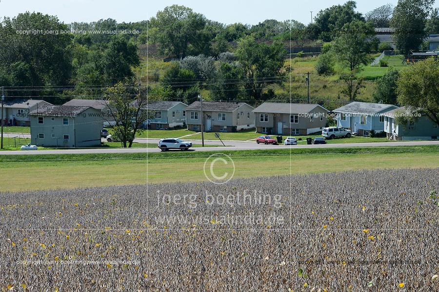 USA, Nebraska, Omaha Reservation, town Macy, soybean field