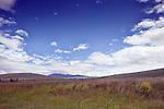 Windblown grasses on range land along Montana Route 141 nearthe Blackfoot River. Big Sky Country.