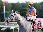 2009 FLAT HORSE INDEX - WORK IN PROGRESS