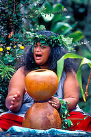 Kumu hula chanting with an ipu heke     ( gourd ) at a Hawaiian ceremony, Kilauea Volcano, Big Island of Hawaii
