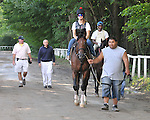 8.17.10 A Little Warm gallops at the Spa in preparation for the Travers