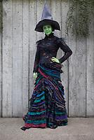 Green Wicked Witch, Emerald City Comicon, Seattle, WA, USA.