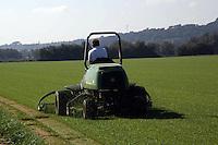 Coltivazione di prato per impianti sportivi. Cultivation of green for sports facilities....