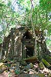 Ancient Ruins, Beng Melea, Cambodia