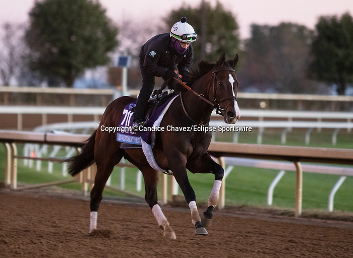 Reinvestment Risk, trained by trainer Chad C. Brown, exercises in preparation for the Breeders' Cup Juvenile at Keeneland Racetrack in Lexington, Kentucky on November 4, 2020.2020.