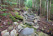 August 2015 - Mt Tecumseh Trail in Waterville Valley, New Hampshire during the month of August. In 2011, the year trail work (stone steps) was done in this section, there was no visible erosion on the left-hand side of the trail. See how this section of trail looked in 2011: http://bit.ly/3760BXz