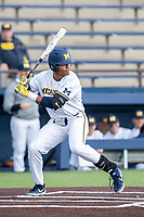 Michigan Wolverines designated hitter Jordan Nwogu (42) at bat against the Western Michigan Broncos on March 18, 2019 in the NCAA baseball game at Ray Fisher Stadium in Ann Arbor, Michigan. Michigan defeated Western Michigan 12-5. (Andrew Woolley/Four Seam Images)