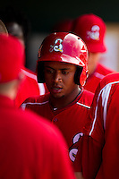 Audry Perez (10) of the Springfield Cardinals is congratulated by teammates in the dugout after hitting a home run during a game against the San Antonio Missions on May 30, 2011 at Hammons Field in Springfield, Missouri.  Photo By David Welker/Four Seam Images