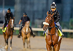 September 3, 2020: Finnick the Fierce exercises as horses prepare for the 2020 Kentucky Derby and Kentucky Oaks at Churchill Downs in Louisville, Kentucky. The race is being run without fans due to the coronavirus pandemic that has gripped the world and nation for much of the year. Scott Serio/Eclipse Sportswire/CSM