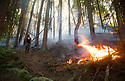 02/07/18<br /> <br /> A walkers watches as a new woodland fire breaks out less than a mile from Alton Towers at Dimmings Dale in Staffordshire.<br />  <br /> All Rights Reserved F Stop Press Ltd. +44 (0)1335 344240 +44 (0)7765 242650  www.fstoppress.com