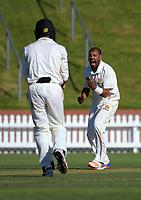 171031 Plunket Shield Cricket - Wellington v Otago