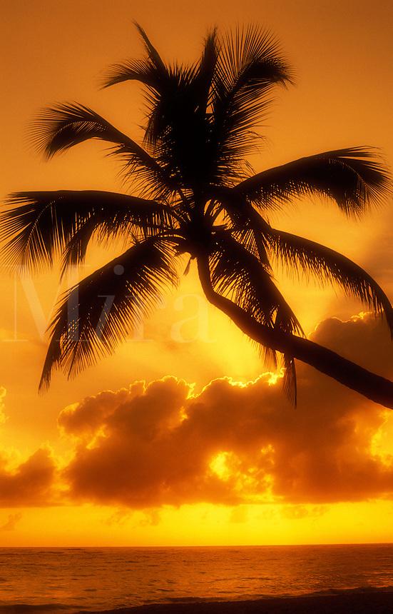 Dominican Republic, Bavaro Beach, sunrise