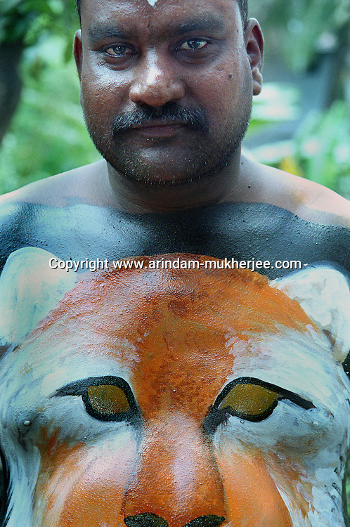 A Pulikali performer with a face of lion painted on his trunk, Trichur, Kerala, India..Pulikali or Kaduvvakali is a two hundred year old folk dance form, practised mostly in Thrissur and Palghat districts of Kerala. It liberally makes use of forms and symbols of nature that finds expression in its bright, bold body painting and high-energy dance movements. The philosophy of Pulikali is that human and nature are integral parts of each other. So by fusing man and beast in its artistic language, it flamboyantly celebrates the connection. Arindam Mukherjee