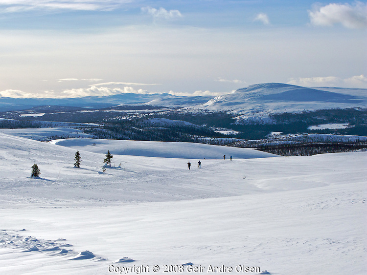 View of the Norwegian mountains one beautiful winters day at Venabygdsfjell, close to the small city Ringebu, north of Lillehammer in Norway