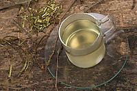 Zitterpappel-Rindentee, Pappel-Rindentee, Pappelrinden-Tee, Pappelrindentee, Rindentee, Pappeltee, Tee aus Pappelrinde, Heiltee, Kräutertee, Rinde, Borke, Cortex populi, Zitterpappel, Zitter-Pappel, Pappel, Espe, Aspe, Populus tremula, Aspen, European aspen, quaking aspen, rind, bark, tea, herb tea, herbal tea, Le Peuplier tremble, Tremble, Tremble d'Europe