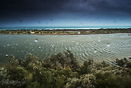 Image Ref: W026<br /> Location: French Narrows<br /> Date: 02 Nov 2014