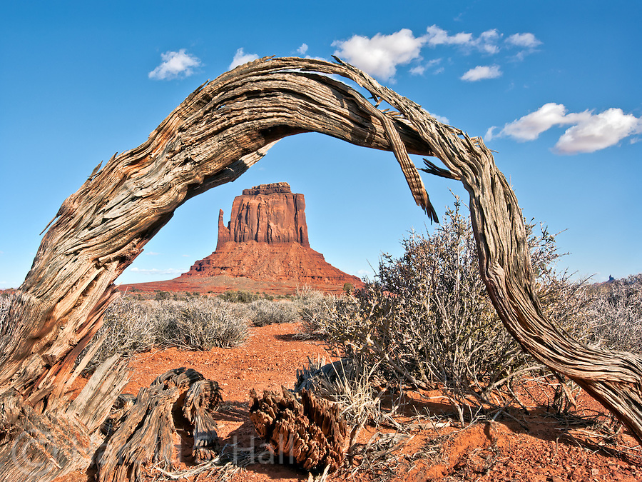 Monument Valley lies on the boarder of Utah and Arizona, near the four corners region. It was made famous by film director John Ford in his western movies. These sandstone buttes are over 1,000 feet tall.