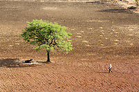 Drought in India [2016]