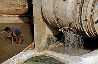 Man working at a tannery, immersed in a vat near the paddle wheel, El Bali, Fez, Morocco.