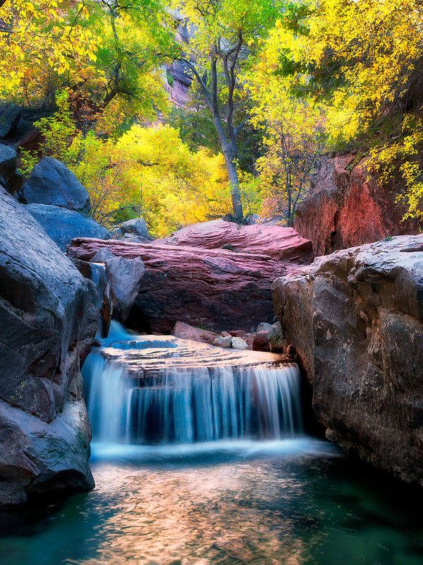 Small waterfall on Left Fork of North Creek with fall colors. Zion National Park, Utah.