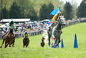 5th Paul Fout Sport of Kings Maiden Hurdle - Unsinkable