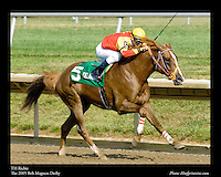 As seen in the Arabian Horse Galleries exhibit at The Kentucky Horse Park<br /> <br /> TH Richie .The 2005 Bob Magness Derby