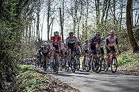 peloton up the Trieu (aka 'Knokteberg')<br /> <br /> 76th Dwars door Vlaanderen 2021 (MEN1.UWT)<br /> 1 day race from Roeselare to Waregem (184km)<br /> <br /> ©kramon