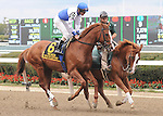Shackleford, ridden by Ramon Dominguez, runs in the Kelso Handicap (GII) at Belmont Park in Elmont, New York on September 29, 2012. (Bob Mayberger/Eclipse Sportswire)