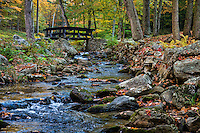 Footbridge over stream, Maceddonia Brook State Park, Kent, Connecticut, USA