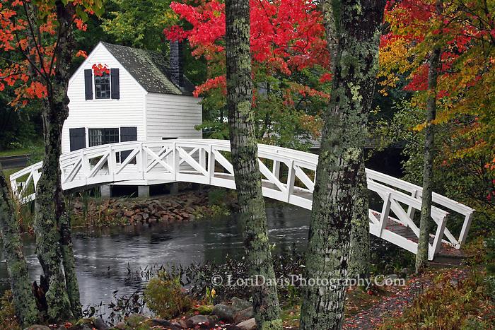 #L37 Autumn At The Somesville Footbridge