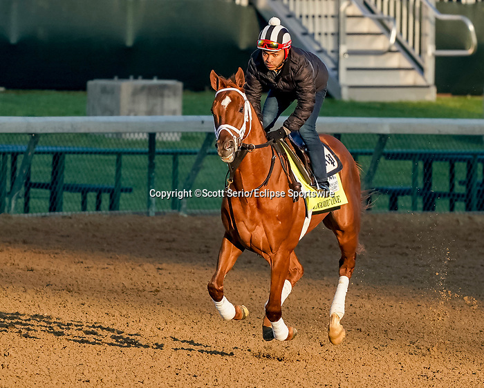 April 26, 2021: Dynamic One exercises in preparation for the Kentucky Derby at Churchill Downs on April 26, 2021 in Louisville, Kentucky. Scott Serio/Eclipse Sportswire/CSM