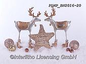 Marek, CHRISTMAS SYMBOLS, WEIHNACHTEN SYMBOLE, NAVIDAD SÍMBOLOS, photos+++++,PLMPBN2016-20,#xx# ,reindeers